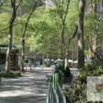 Moving survey - Bryant Park, NYC